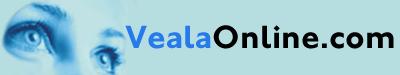 Email Corporativo con Servidores VealaOnLine.com